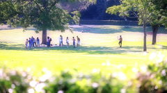 Young adults relaxing and playing at park - stock footage