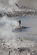 Boiling Mud Pool - stock photo