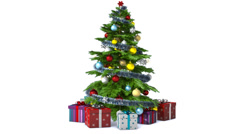 Rotating Christmas tree. With alpha, loopable - stock footage