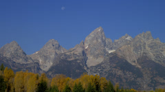 MOUNT TETON AND FALL TREES (CLOSE UP) # 2 Stock Footage