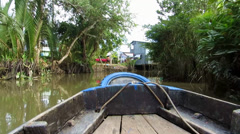Jungle in Mekong delta, Vietnam, view from a moving boat Stock Footage