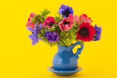 colorful bouquet anemones - stock photo