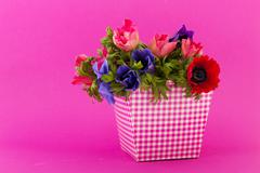 Colorful bouquet anemones Stock Photos
