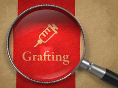 Grafting Concept: Magnifying Glass - stock illustration