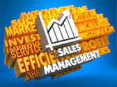 Stock Illustration of Sales Management. Wordcloud Concept.