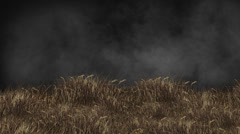 Grass Animation Background + Alpha Channel Stock Footage