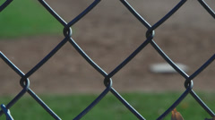 Secluded Baseball Field (2 of 9) Stock Footage