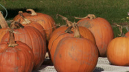 Stock Video Footage of Harvest Festival (4 of 9)