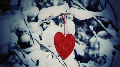 Textile heart hanged on a snow-covered forest bush Stock Footage