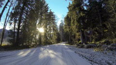 Driving In the Hoh Rainforest POV, Winter, Road, Snow, Olympic National Park Stock Footage