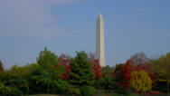 WASHINGTON MONUMENT BETWEEN TREES # 6 Stock Footage