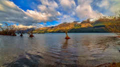 Timelapse Row Of Trees, Clouds And Mountain 720p - stock footage
