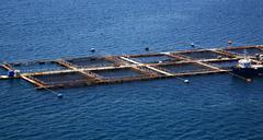 farming fish kefalonia - stock photo