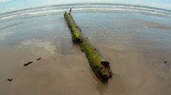 Log Washed Up On Beach Stock Footage