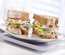 tuna sandwich with brown bread served on a plate - stock photo
