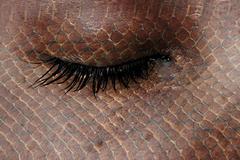 Stock Illustration of women eye, close-up