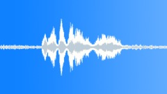 Cock sound Sound Effect