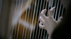 Classical Orchestra: Harpist - stock footage