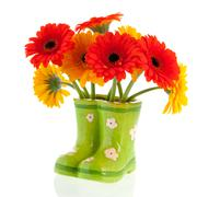 gerber flowers in green boots - stock photo