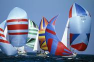 Stock Photo of Sailboats under spinnaker in sail race