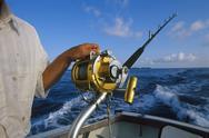 Bermuda, Big Game fishing, crewman setting rods Stock Photos
