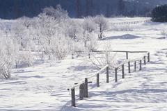 Countryside in winter Stock Photos
