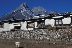 Nepal, Everest region. Tengboche Monastery - stock photo