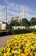 Turkki, Istanbul, Sultanahmet moskeija, Sininen moskeija Kuvituskuvat