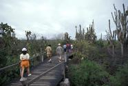 Stock Photo of Galapagos,Santa Cruz, tourists visiting the island