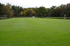 big grass-plot - stock photo