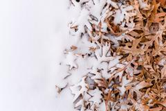 fallen leafs and snow during winter time - stock photo