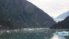 Icebergs and Glacier in Alaska Stock Footage