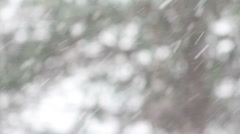 Trees out of focus with heavy snowfall in foreground Stock Footage