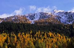 Mountain range and woods in autumn - stock photo