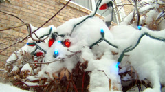 Low angle Christmas lights on shrubs covered in snow Stock Footage