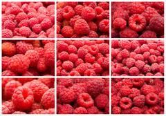 Raspberries Stock Illustration