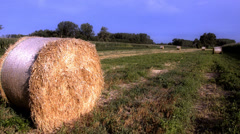 Hay bales Stock Footage
