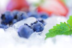 blueberries with mint leaf on the ice cubes - stock photo
