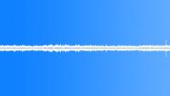 general noise crows rain birds - sound effect