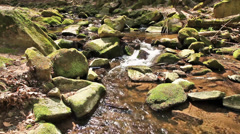 Stock Video Footage of The river runs over boulders in the primeval forest