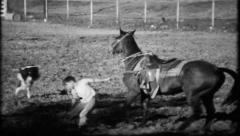 702 - young cowboy struggles in rodeo calf roping - vintage film home movie Stock Footage