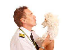Airline pilot with dog Stock Photos