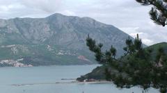 Pine tree and Montenegro shore Stock Footage