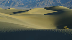 SAND DUNES IN DEATH VALLEY – SUNRISE (PAN) # 8 Stock Footage
