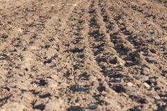 Field arable Stock Photos