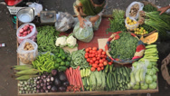 Stock Video Footage of vegetable seller