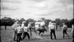 Ranch hands have fun riding a cow at the ranch, 710 vintage film home movie Stock Footage