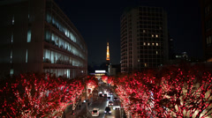 Roppongi Hills Christmas Illumination Stock Footage