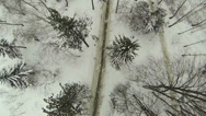 Stock Video Footage of Winter forest, road in wood. Aerial