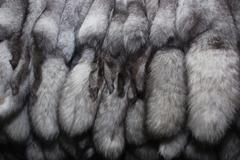 furs of polar fox - stock photo